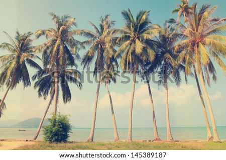 Vintage Palm Tree Wallpaper Nostalgic Background Stock Photos Images Pictures
