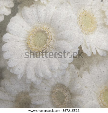 vintage wallpaper background with daisy - stock photo