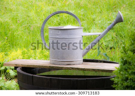 Vintage watering can in the garden - stock photo