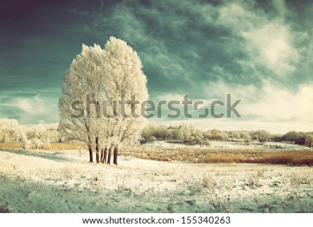 Vintage winter landscape with frozen tree in field and blue sky with clouds - stock photo