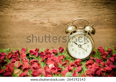 Vintage wooden background with retro alarm clock on grass with red dry flower - stock photo