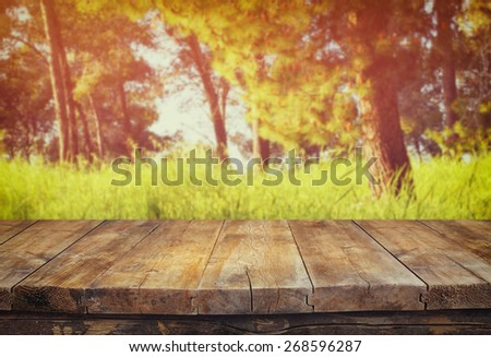 vintage wooden board table in front of dreamy forest landscape with lens flare.  - stock photo