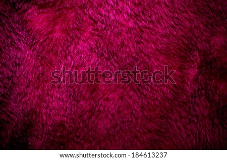Violet fur for usage as background - stock photo