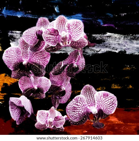 Violet orchid flowers on grunge stained colorful background - stock photo