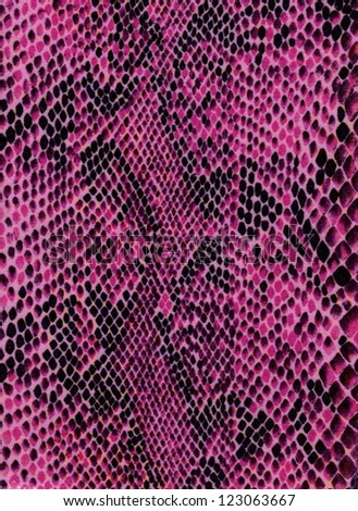 Violet snake skin with pattern, reptile - stock photo
