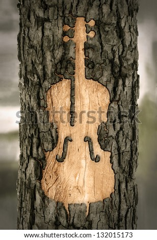 violin carved into the bark of a tree - stock photo