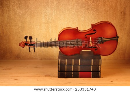 Violin or fiddle on books bunch  still life style - stock photo