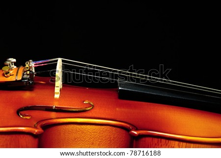 violin over a black background - stock photo
