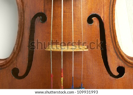 violin strings - stock photo