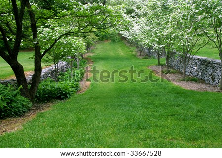 Virginia Arboretum Dogwood Lane in Spring Horizontal - stock photo