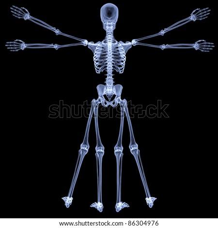 vitruvian man under X-rays. isolated on black. - stock photo