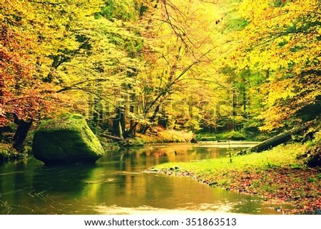 Vivid colors of mountain river. Colorful banks with leaves, leaves trees bended above mountain river. - stock photo