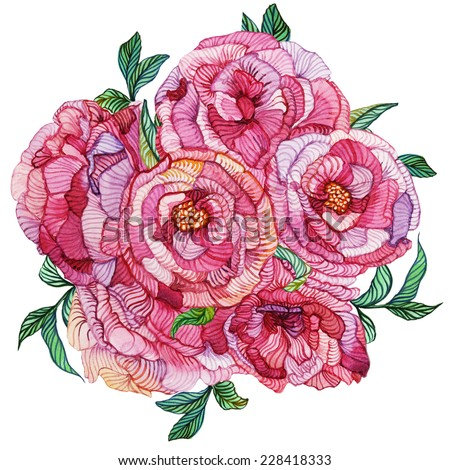Vivid pink roses. Bunch of pink roses with leaves on white background. Isolated hand drawn colorful watercolor object. - stock photo