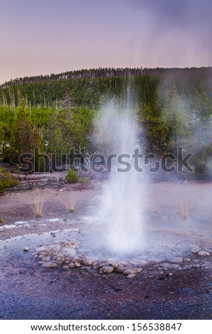 Vixen Geser eruption - Norris Basin Yellowstone - stock photo