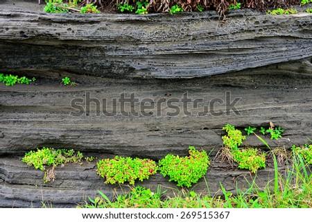 Volcanic deposits. south korea, jeju island - stock photo