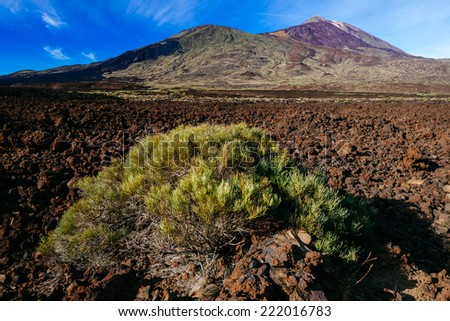 Volcanic lava landscape on Teide, Tenerife, Canary Islands, Spain. - stock photo