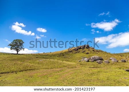 Volcanic rocks on the green hillside, Waiheke island in Hauraki Gulf, Auckland region, New Zealand  - stock photo