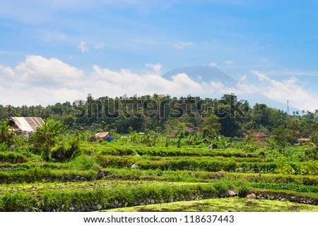 Volcano Agung under clouds and rice fields, Bali, Indonesia - stock photo