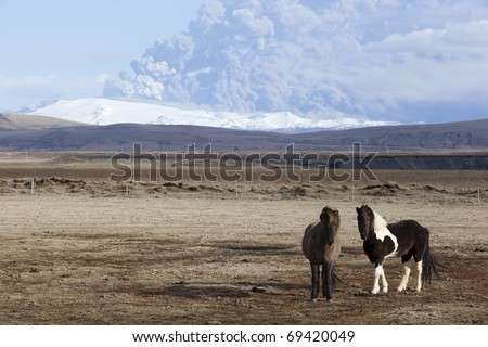 Volcano Eruption in Iceland Ash Horses and Sky - stock photo