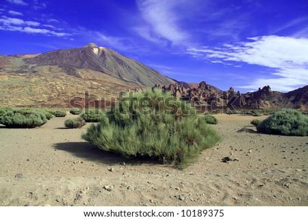 Vulcan landscape at El Teide in Tenerife. - stock photo