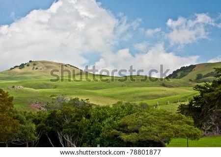 Waimea Hills - stock photo