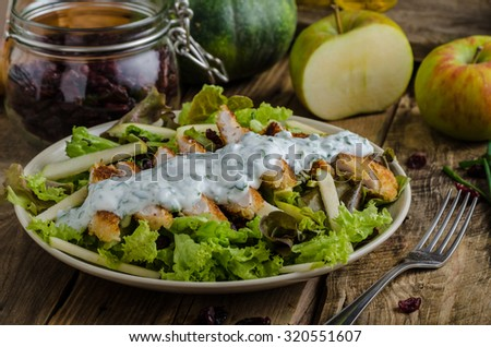 Waldort salad, very simple and delicious salad with nuts and apples, with grilled chicken and herbs dip - stock photo