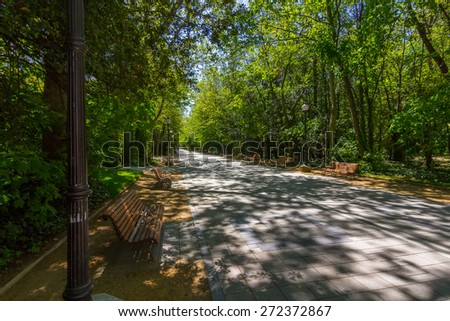 walk among trees with wooden benches to rest - stock photo