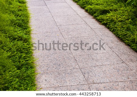 walk path in garden along with green plants - stock photo