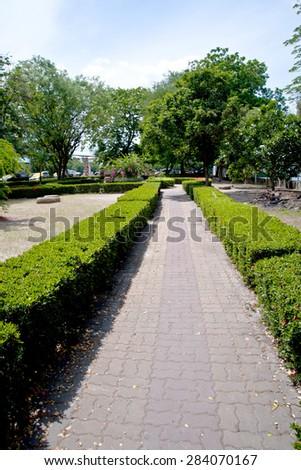 Walk way in garden - stock photo