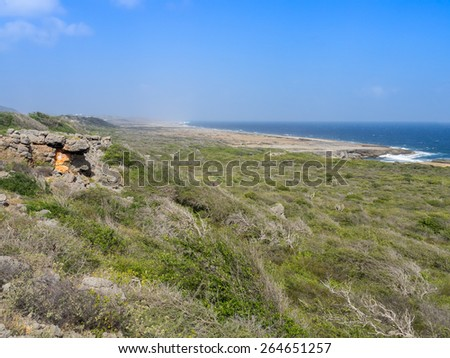 Walking in christofel National park - on the Caribbean Island of Curacao - stock photo