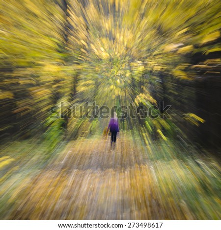 Walking in the autumn forest. Zoom effect with Lens - stock photo