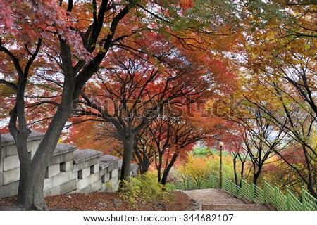 Walking path along the fortress wall of Bugaksan mountain near Seoul, South korea.The wall stretches 18.6 km along the ridge of Seoul's four inner mountains, Baegaksan, Naksan, Namsan, and Inwangsan - stock photo