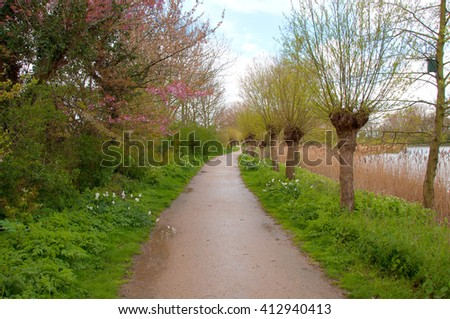 Walking the dog in this park is great fun. This pathway, these trees, these colors and a great sky. Spring is a lovely season. - stock photo