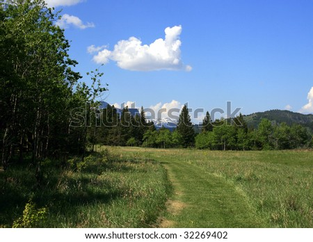 Walking trail at Beauvais Lake Prov. Park, Alberta, Canada; distant mountains, blue sky and clouds; green field; trees - stock photo