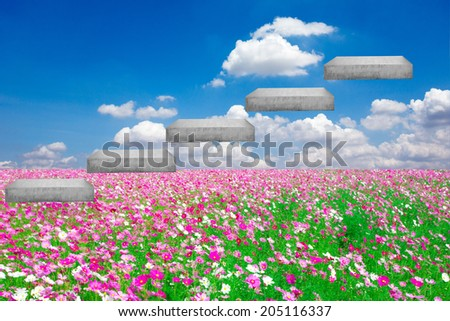 walking up stepping ladder on field flower against blue idea concept for success and growth - stock photo