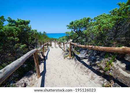 walkpath to the beach - stock photo