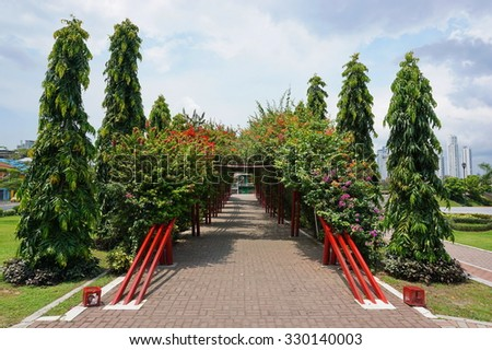 Walkway under a tunnel of bougainvillea, Plaza Quinto Centenario, Panama City, Panama, Central America - stock photo
