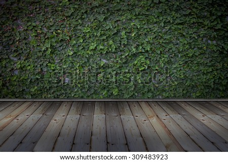 wall green  on wood vintage - stock photo