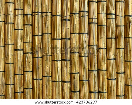 Wall of reed mats. Detail of a traditional building in Barra. Inhambane, Mozambique, Southern Africa - stock photo