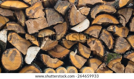 Wall of the firewood - stock photo