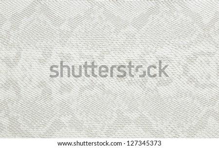 wallpaper texture skin snake style color white - stock photo