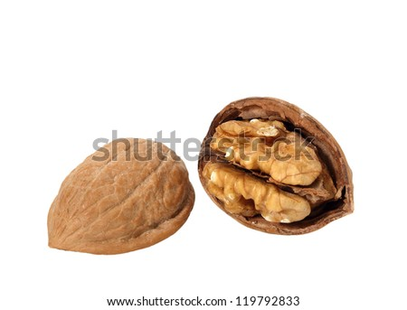 Walnut Cracked Open in Shell isolated on white - stock photo