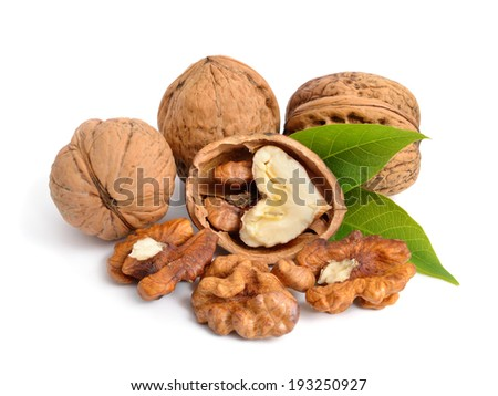 Walnut isolated in white background. - stock photo