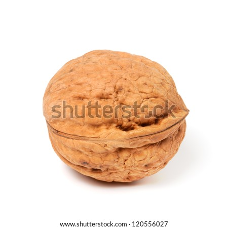 Walnut on white background. Close-up view. - stock photo