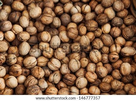 Walnuts in shells \focus free - stock photo