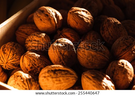 Walnuts in wooden box at Rialto Food Market in Venice. Selective focus on the lighted walnut in the center and shallow depth of field. A game of golden sunlight and shadow. - stock photo