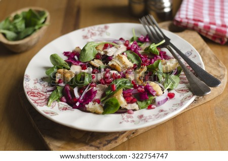 Warm chicken and ciabatta salad with pomegranate seeds - stock photo