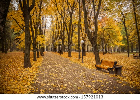 warm peaceful day in the autumn park - stock photo