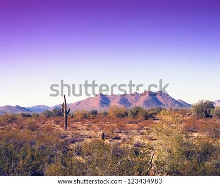 Warm skies in the Arizona desert mountains - stock photo
