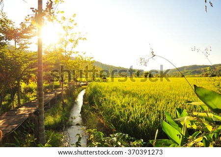 Warming Light at The Terrace Beside Riace Field in The Morning - stock photo